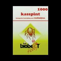 BIO IBO Kasspint
